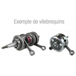 VILEBREQUIN MINARELLI AM6 50CC, X-LIMIT 50, X-POWER 50, DTR50, TZR50, XP6 50, RS50